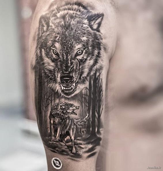 مدل تاتو گرگ روی بازو