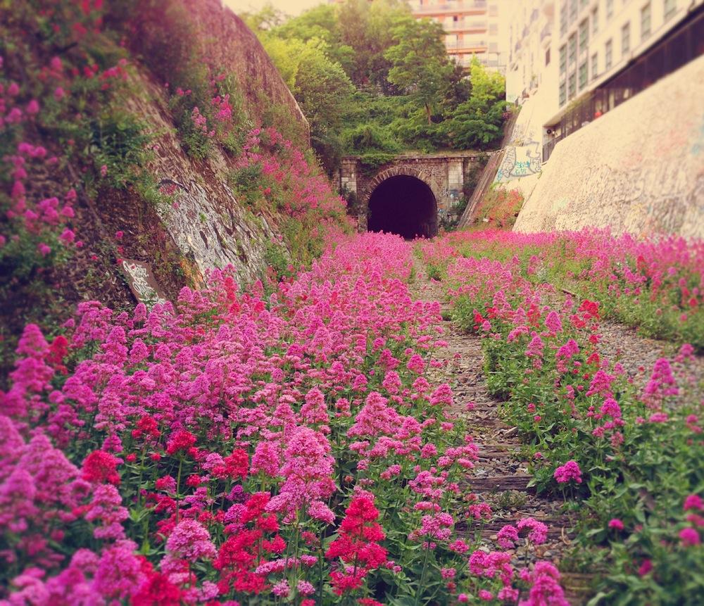 عکسهای زیبا از طبیعت برای پروفایل با کیفیت بالا